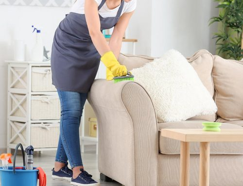 5 Reasons for Using Mary's as your Cleaning Agency in Kingston